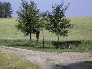 Weg mit Kreuz Erdweg Hofer Ferienwohnungen