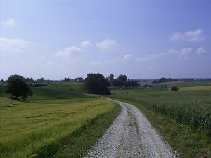 Gehweg nach Hof Erdweg Hofer Ferienwohnungen Monteurwohnungen München Dachau